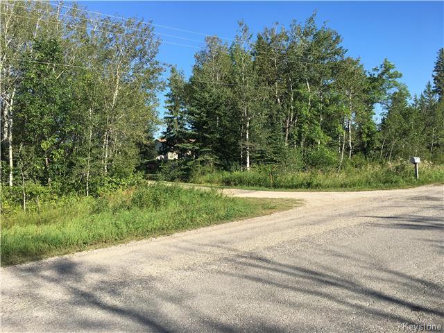 66035 Deacon Road 23E Road N, Rm of Springfield, Oakbank Manitoba